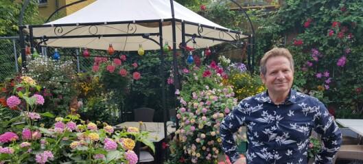 Her er Oslos fineste hager i år