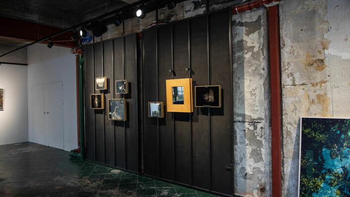 På Shoot Gallery kan du se et stort utvalg av gode fotokunstnere på én gang – og kjøpe verkene deres. Foto: Hilde Kari Nylund