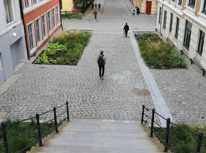 Gateanlegg i Deichmans gate og Wilses gate er løst forbilledlig, mener juryen. Foto: Janicke Ramfjord Egeberg