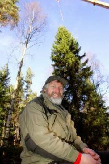 Skogoppsynsmann Håvard Pedersen har pekt ut julegrana som skal til London. Treet er 60 år gammelt, 22 meter høy og sto nær Årvollsåsen. Foto: Bjørn Sigurdsøn / SCANPIX