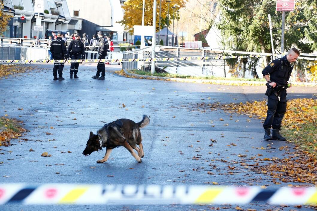 Tre menn mellom 18 og 22 år er siktet etter masseslagsmål på Stovner onsdag. Foto: Terje Pedersen / NTB scanpix