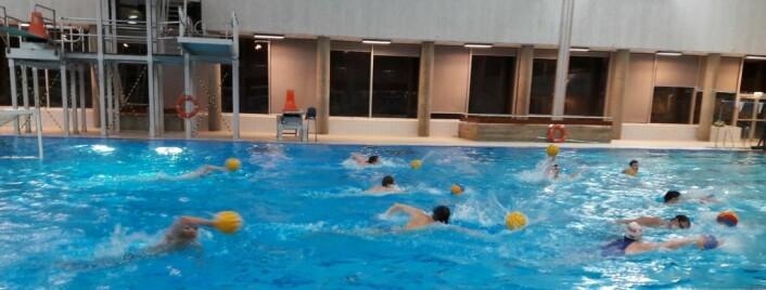 På 50-tallet kom vannpoloen til Vika IF. I dag er vannpolo den eneste idretten som drives aktivt i klubben. Her fra vannpolotrening i Tøyenbadet. Foto: Anders Høilund