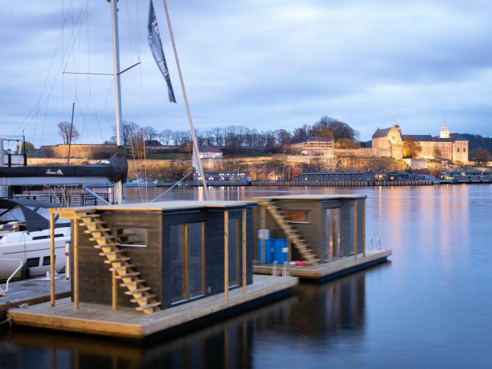 – Karius og Baktus snakket om å ha hus i alle tennene, vi vil ha badstue bortover hele havnepromenaden, sier Kari Hirth. Foto: Bjørnar Morønning