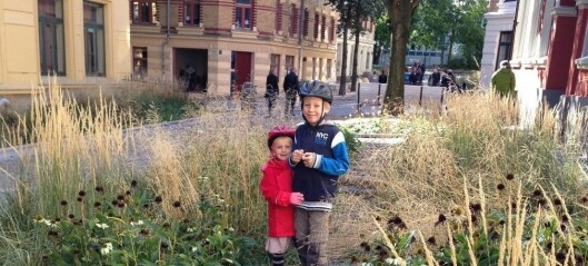– Oslo må bli enda grønnere. Fortetting og klimaendringer gjør at byen får overvannsutfordringer