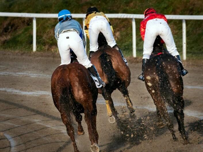 I det de raste over mål var to hester foran Viktoria og Ciccarelli. Foto: Bjørnar Morønning