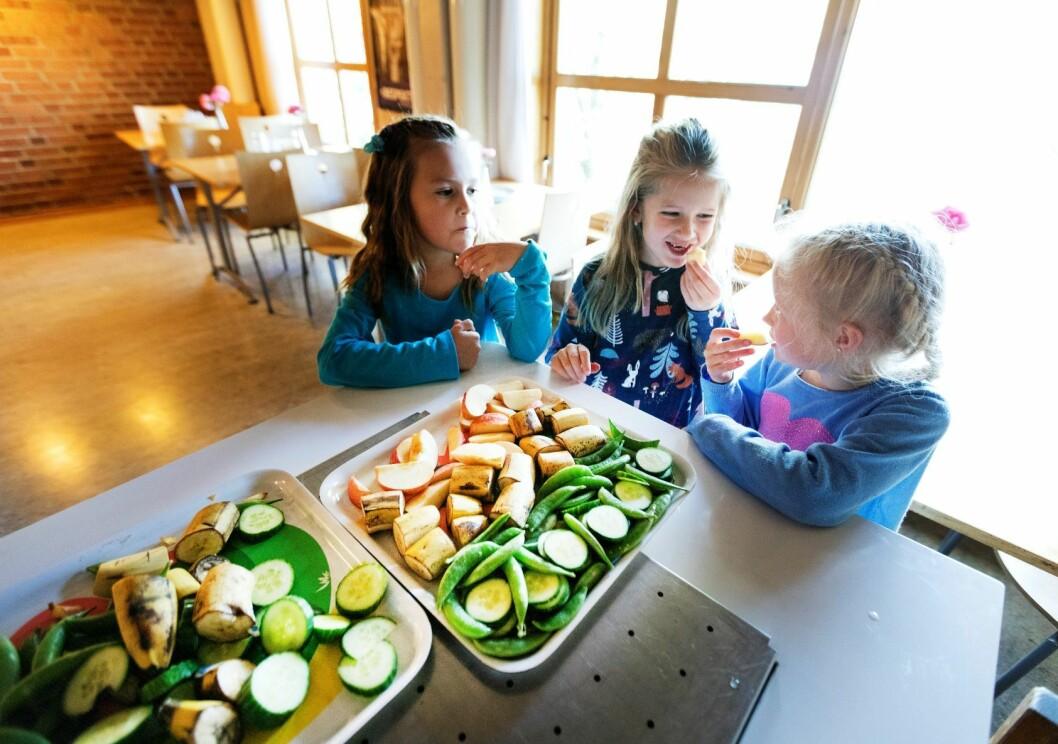 Nå har bystyret vedtatt at elevene skal få mat i løpet av skoledagen, riktig ikke kjøtt. Illustrasjonsfoto: Gorm Kallestad / NTB scanpix