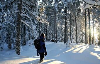 Store deler av Østmarka skal vernes og blir nasjonalpark