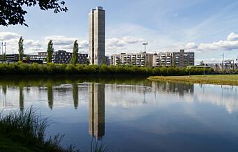Vannspeilet i Middelalderparken tappes ned grunnet anleggsarbeid. Fylles opp igjen før sommeren