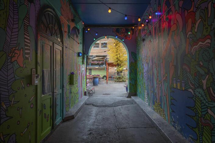Denne fargerike og mystiske korridoren er passasjen til uteserveringen på Dattera. Foto: Olav Helland