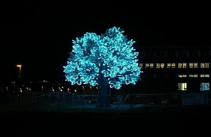 Det 14 meter høye og 12 meter brede treet Hagen har lånt ut til Oslo kommune har 125.000 LED-lamper. Foto: Canica AS