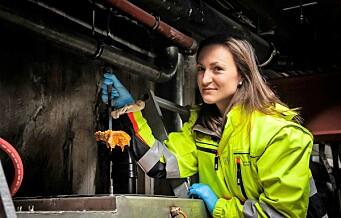 Fettet fra Oslos julebord kan samles inn og brukes til biodrivstoff