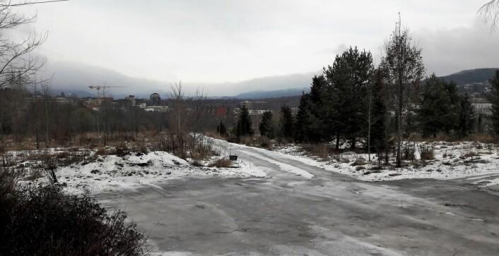 Området på Engebråten ligger flott til. Kort vei til Akerselva, og med utsikt til Maridalen og Lillomarka. Foto: Anders Høilund