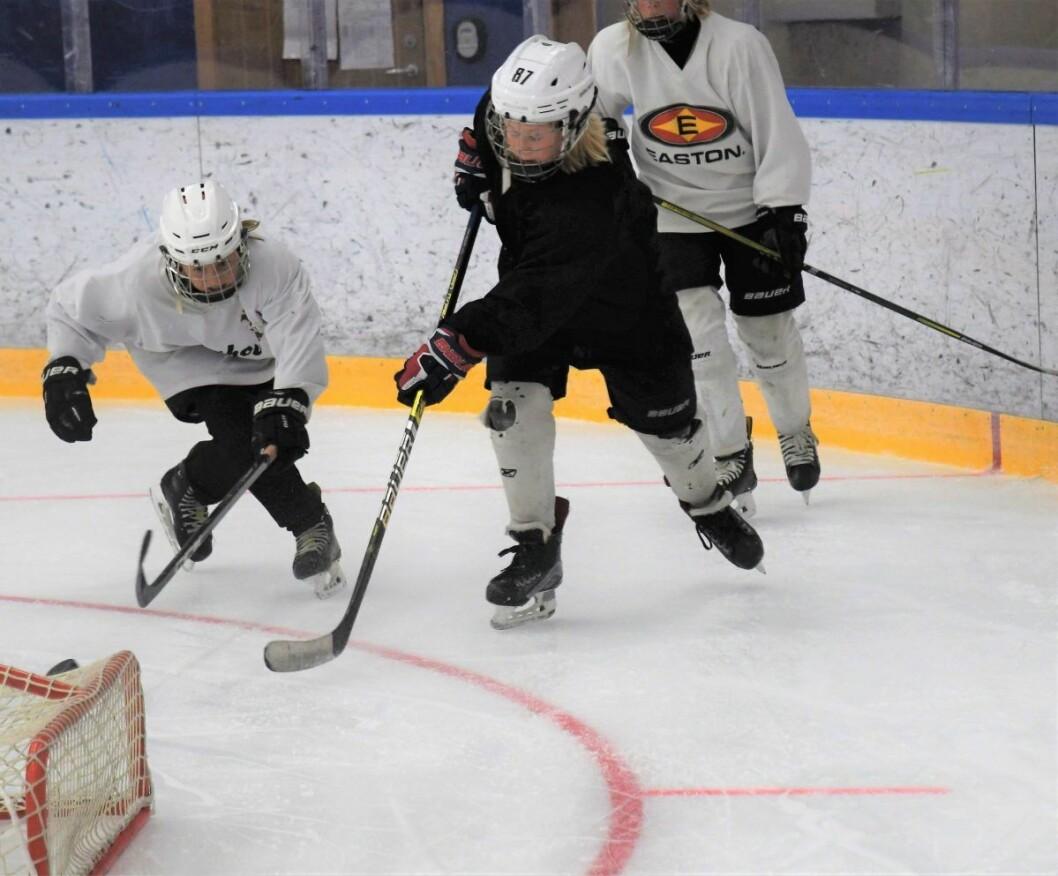 Sommeris er viktig for utviklingen av hockeysporten blant barn og unge i hovedstaden. � Nå må byrådet prioritere å beholde dette tilbudet også neste sommer, sier Høyres Pia Farstad von Hall. Illustrasjonsfoto: Christian Boger