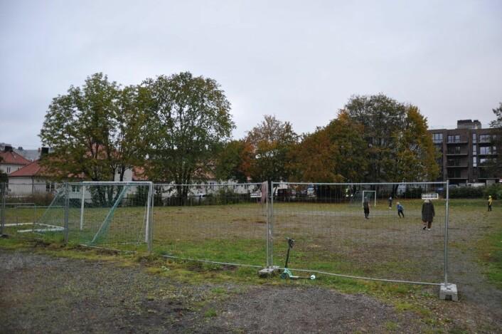 Denne tomta ut mot Thulstrupsgate på Adamstuen tilhører Veterinærhøyskolen, som nå snart er fraflyttet. Her ønsker foreldrene midlertidig paviljongskole mens Bolteløkka skole totalrehabiliteres. Foto: Arnsten Linstad