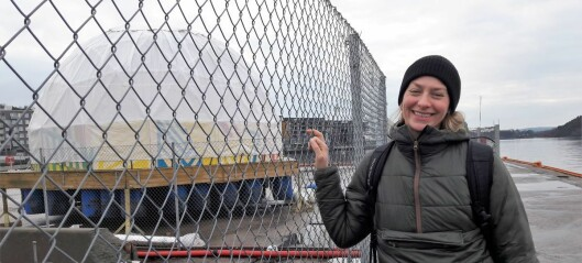 Lokalpolitikerne i Gamle Oslo frykter utredning av Sukkerbiten tar for lang tid. Vil ha aktivitet allerede til våren