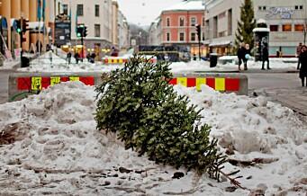 - Ikke kast meg for jeg vil resirkuleres. Fem dager igjen med gratis juletrehenting i Oslo