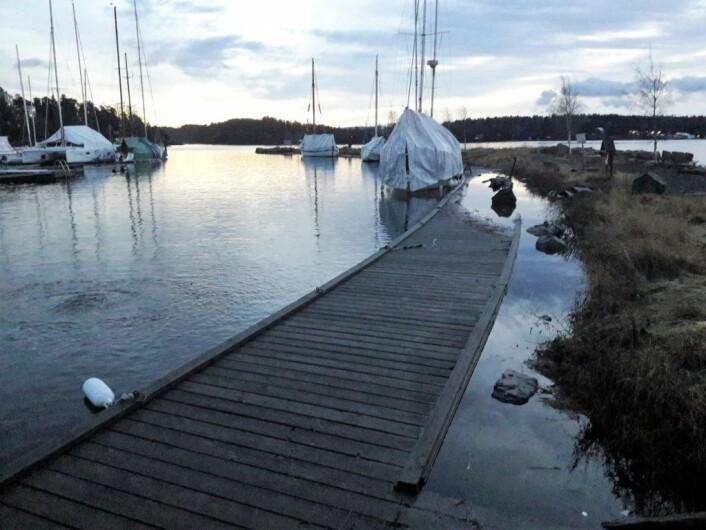 Da morgenen grydde vist det seg at bryggene på Sollerud så vidt sto over vannflaten. Foto: Anders Høilund