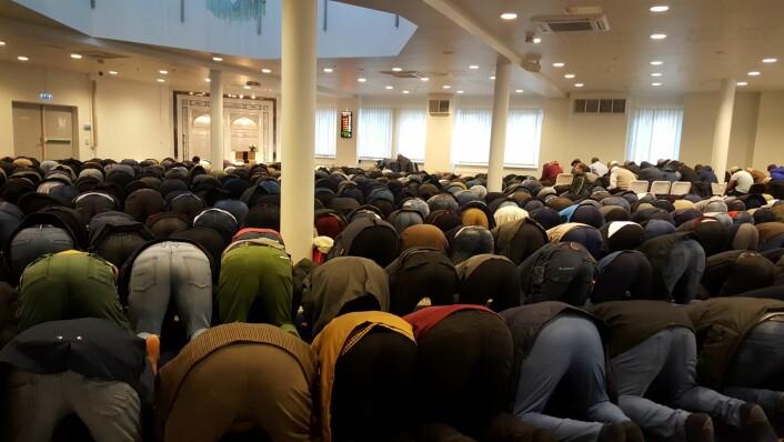 Muslimsk bønn består av både ord og bevegelser. Foto: Tarjei Kidd Olsen