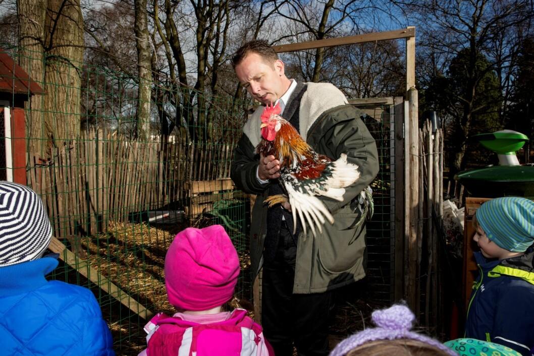 Kokk Andreas Viestad på Barnehagedagen med barn fra Steinrøysa barnehage på Geitmyra matkultursenter. Foto: Håkon Mosvold Larsen / NTB scanpix