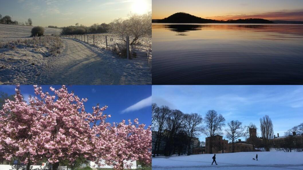 Har du et bilde av været i Oslo som fortjener å henge på museum?