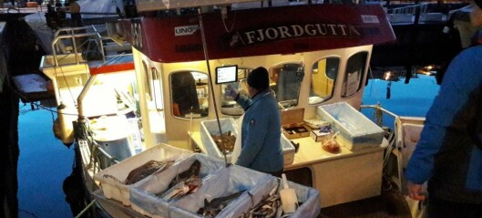 Oslo Havn halverer havneleien for fiskebåtene i 2020