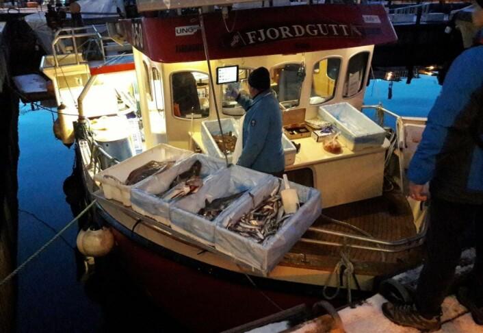 Tidlig om morgenen åpner salget på Rådhuskaia. Her betjener Christian Rochstad om bord i Fjordgutt køen av sjømatelskende kunder. Foto: Anders Høilund