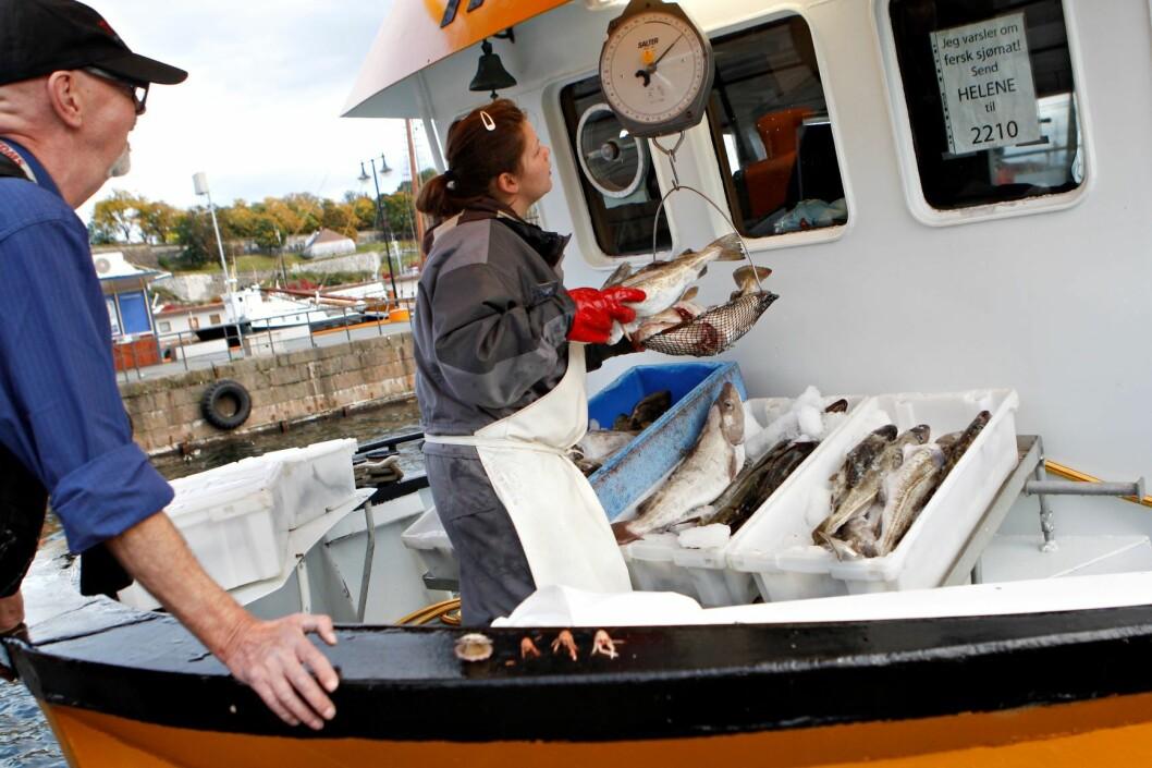 Alle forstår at en økning i havneleien på over 200 prosent ikke er lett for fiskerne i Oslofjorden. Her har Oslo Havn opptrådt klønete. Foto: Anette Karlsen / NTB scanpix
