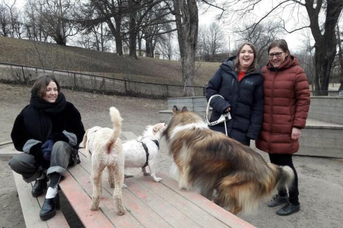 Christine Nøtnes, Andrea Isaachen Olvin og hundeforeningens leder, Hilde Andersen er opprørt, og svært overasket over at bydelen velger å stenge hundeparken helt. Foto: Anders Høilund