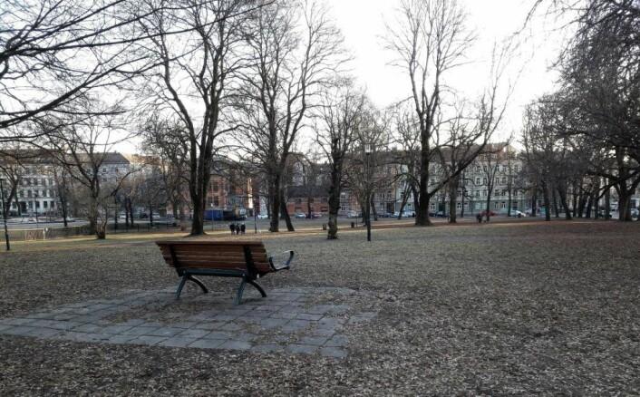 Det er i denne delen av Sofienbergparken at forslaget om en inngjerdet hundeluftegård har kommet. Foto: Anders Høilund