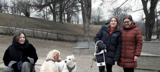 Bydel St. Hanshaugen søker nå råd hos hundeforening om hundepark. Går ikke i samme fella igjen