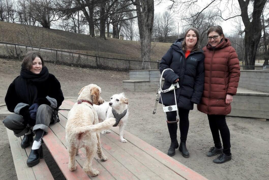 Reaksjonene etter VårtOslos omtale av nedleggelsen av Stensparken hundepark har vært en vekker. Nå utreder bydelen nye hundeparker. Foto: Anders Høilund