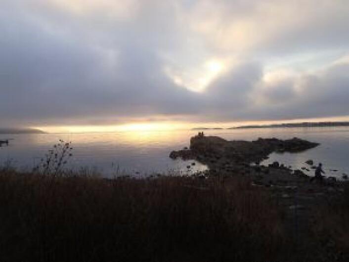Fornebobanen er foreslått å gå under fjorden fra Bygdøy til Fornebu