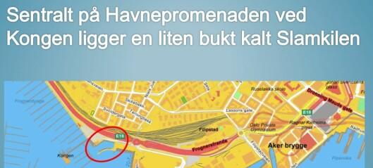 Et innbyggerforslag tvinger byrådet til å vurdere en båtboerhavn