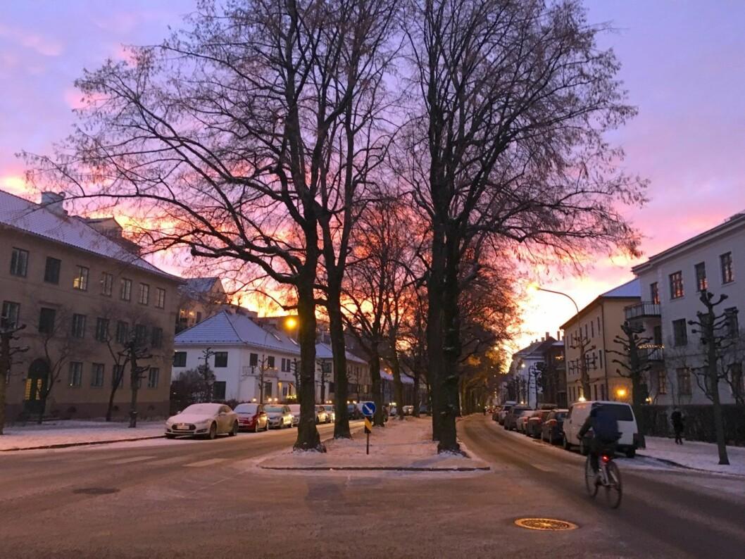 Innbyggere i området rundt Gyldenløves gate på Frogner mener det er uproblematisk for syklister i dag. Foto: Ingalill Sandal