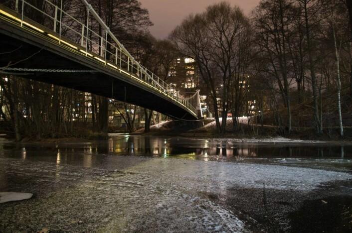 Åmot bru var Norges første hengebro i stål og strakk seg over Drammenselva. Nå står den i forkortet versjon ved Øvre Foss på Grünerløkka. Foto: Kyrre Songstad Seim