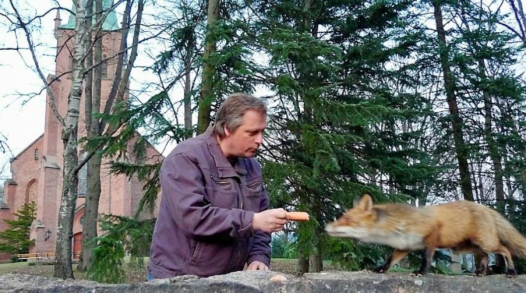 Det blir lettygd middag for Mikkel. Biolog Bjørn Winther byr på røkt pølse. Foto: Morten Sverre Andersen.