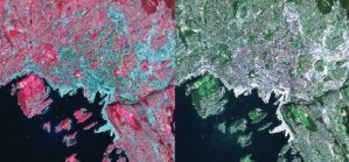 Satellittbilde over Oslo: Bildet til høyre viser det synlige spekteret slik vi ser det naturlig, mens den infrarøde kanalen egner seg spesielt godt til å skille mellom forskjellige typer avlinger og skogstyper. Det turkise er tettbebygde strøk, mens det mørkerøde er planter. De reflekterer det infrarøde lyset godt. Det lyserøde er planter som vokser raskt. Dette hjelper forskerne å overvåke vekst. Foto: ESA