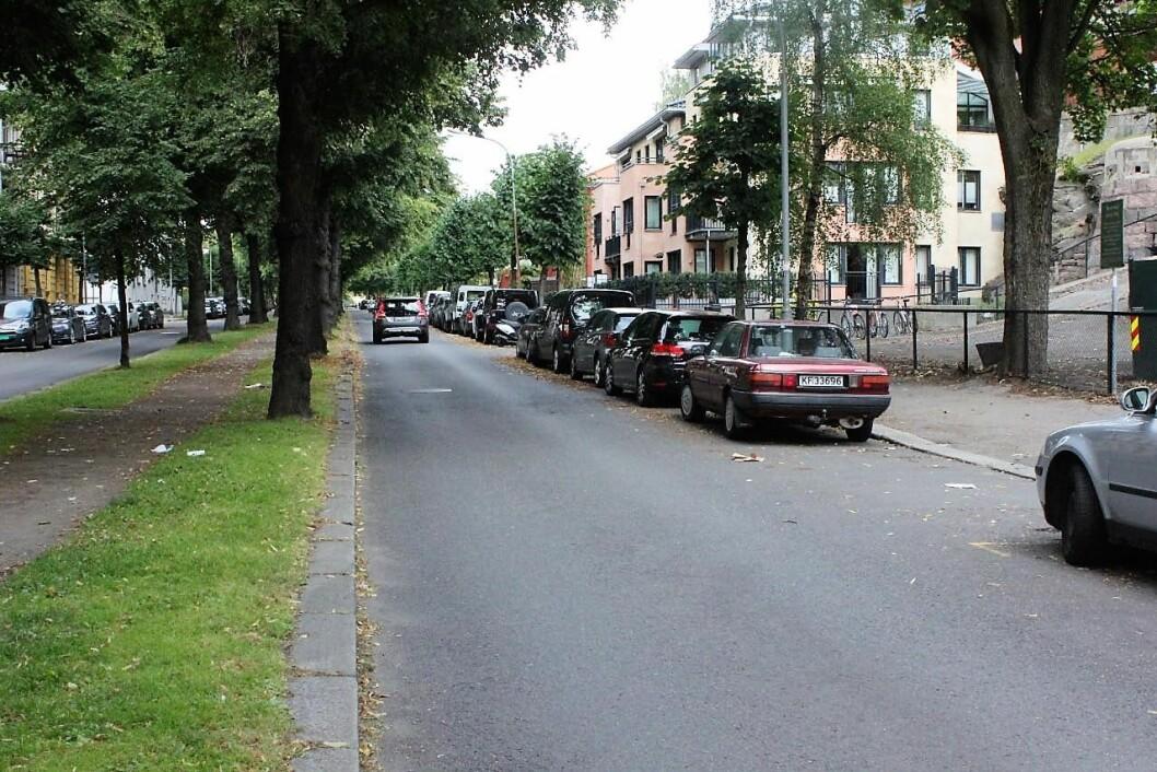 Gyldenløves gate på Frogner er en av veiene hvor bystyreflertallet vil anlegge sykkelvei. Foto: Hans Magnus Borge
