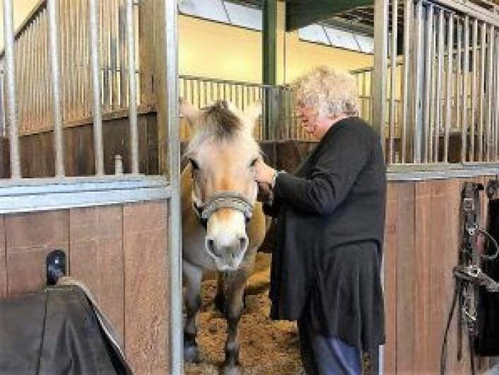 En av de frivillige i stallen, Reidun Valen, steller med den eldste hesten. Foto: Yasmin Sfrintzeris