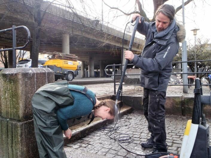 Hroar Hesselberg fjerner måkeskitt, både den som var på bakken, og den som Anne Marte Archer fikk i hodet. Foto: Anders Høilund