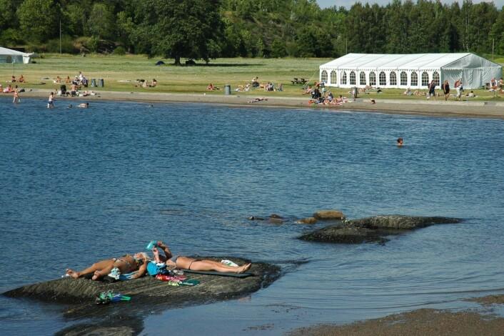 Små og store nyter en lat sommerdag på stranda på Langøyene. Foto: Bymiljøetaten / Oslo kommune