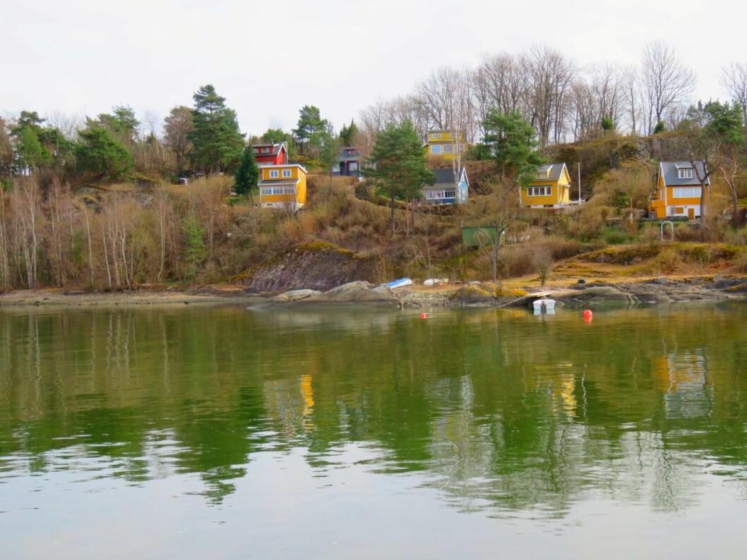 Bleikøya sett fra fjorden. Foto: Kyrre Songtad Seim