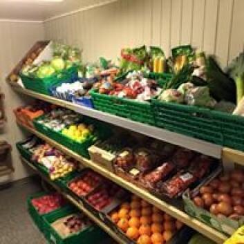 Til tross for leveranser kun en gang i uka er utvalget av frukt og grønt ikke noe å klage på. Foto: Svenn Ove Karlson