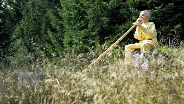 Tori Wraanes performance Track of horns. Foto: Jochen Unterhofer