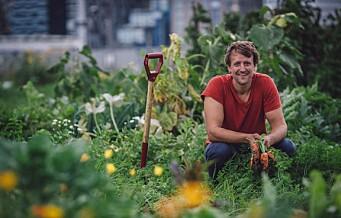 Interessert i urbant landbruk? I helgen arrangeres festivalen Dyrk Nabolaget! midt på Grønland
