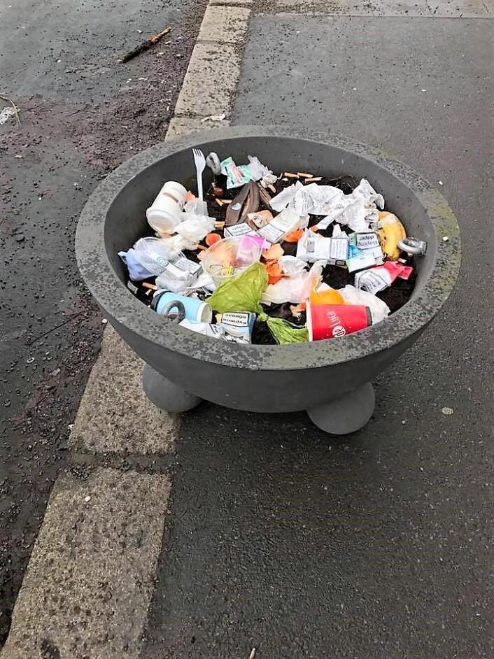 Søppel i en blomsterpotte i Schwensensgate på St. Hanshaugen. Foto: Bjørnar Johnsen