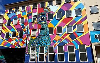 Påfuglen, Oslos største kunstnerkollektiv, på Grünerløkka, står uten lokaler etter sommeren