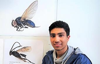 Elever på Hersleb skole oppdaget fire insekter i Botanisk hage som aldri før er registrert i Norge