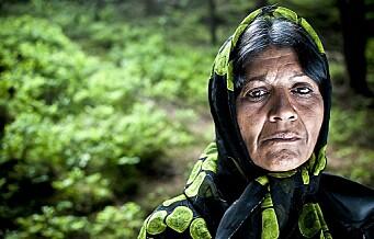 — Høyre tar feil om bostedsløse migranters menneskerettigheter