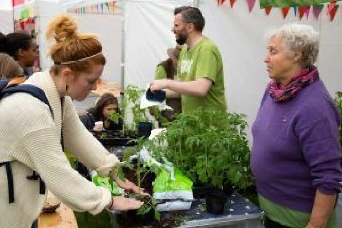 Elsa-Britt Enger hjalp de besøkene med tomatplantingen, og ga tips og råd om stell og vedlikehold. Foto: Susanne Skaug